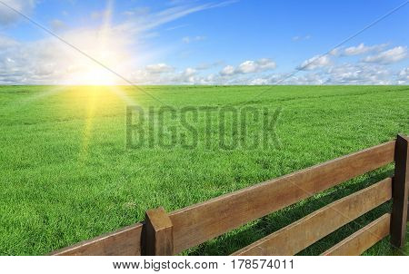 Farm. Field with green grass and a fence.