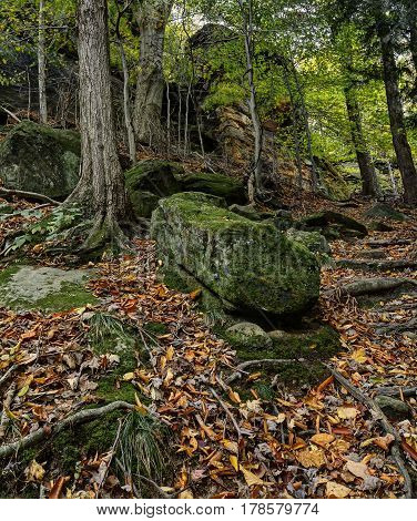 The autumn view from the Virginia Kendall Ledges in Cuyahoga Valley National Park near Cleveland Ohio.