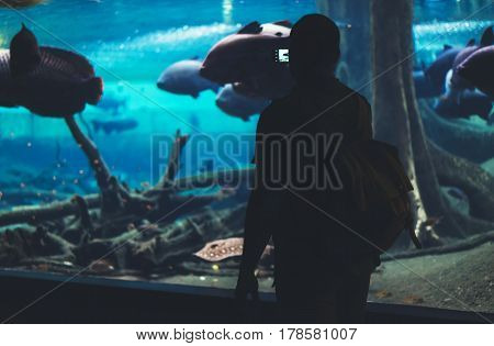 Hipster with yellow backpack map phone. View from back tourist traveler on background blue sea aquarium. Person hiker in oceanarium museum Barcelona and photographer pictures fish smartphone mockup