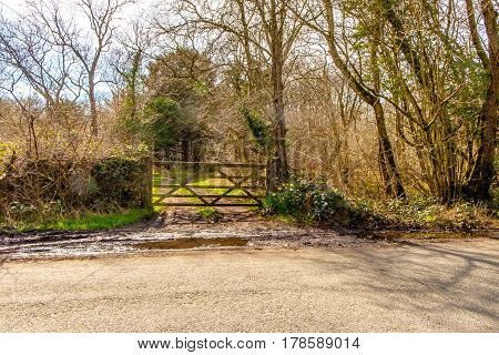 View of a farm gate leading into green countryside.