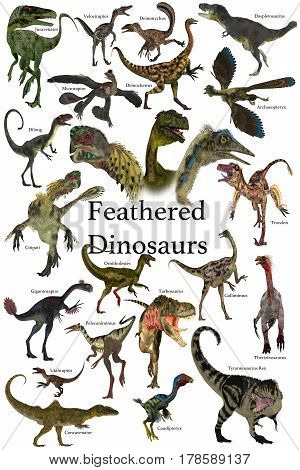 Feathered Dinosaurs 3d illustration - A collection of various feathered dinosaurs from different prehistoric periods of Earth's history.