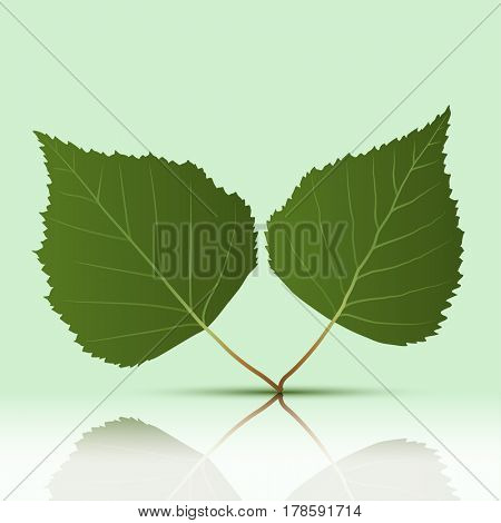 Green Leaves on a green background. illustration.