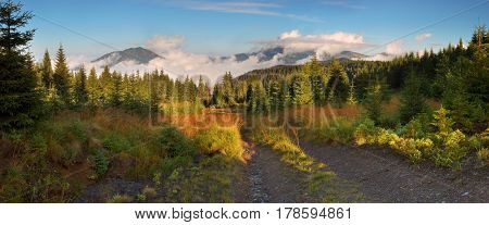 Autumn landscape with road in the mountains. A beautiful morning mist. Carpathians, Ukraine, Europe
