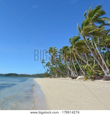 Landscape Of A Remote Tropical Beach In Fiji