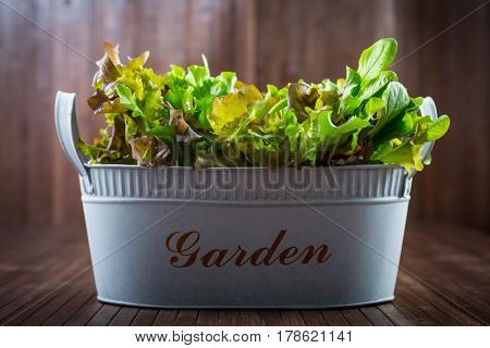 Fresh salad on wooden table