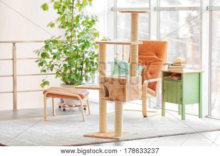 Cat tree in room interior