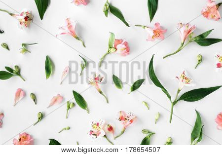Flat lay floral pattern made of pink alstroemeria leaves and petals on white background. top view