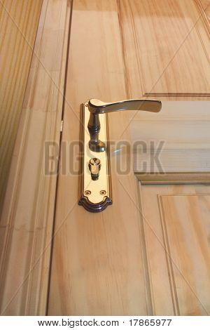 Nice and elegant wooden door with bronze handle.