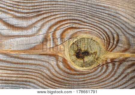 wooden plank with knot , close up