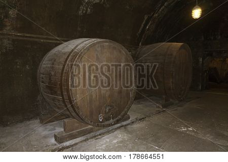 old large barrels with wine in a dark cellar