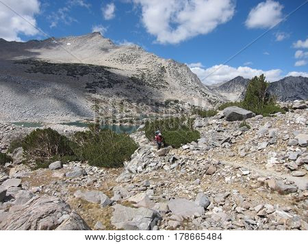 Hiking trail in Kings Canyon National Park