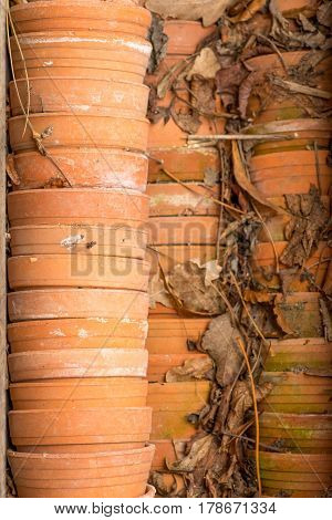 empty old retro terracotta pots Stacked on top of each other with old dead leaves