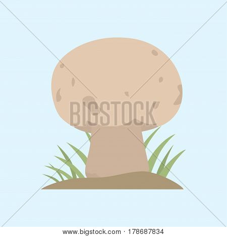 Poisonous white mushroom nature food vegetarian healthy autumn edible and fungus organic vegetable raw ingredient vector illustration. Gourmet poison not eating drawing grow plant.