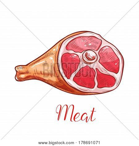 Meat isolated sketch. Fresh meat of pork or lamb leg, ham or smoked gammon. Butcher shop menu, food packaging design