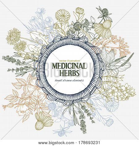 Cute hand-drawn round rope wicker frame with place for text with medicinal herbs and flowers, color vector vintage sketch illustration, echinacea, chamomile, lavender, calendula, clover, dandelion, st john's wort, plantain, dog rose and valeriana