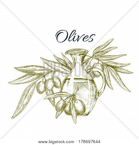 Olive oil jug with fruit sketch. Glass pitcher of olive oil, adorned by olive tree twig with fruit and leaves isolated symbol for healthy food, natural organic oil and mediterranean cuisine design