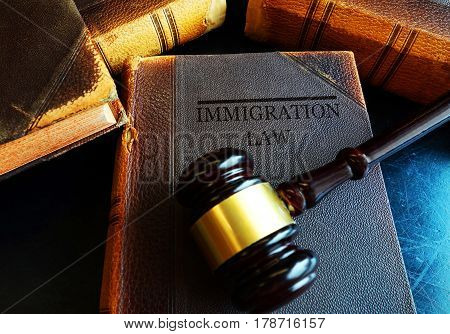 Immigration Law book with a court gavel