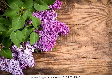 Bunch of lilac flowers with green leafs in corner of dark brown wood table, empty space for text