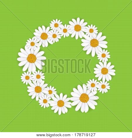 Spring round frame with blooming chamomile flower vector illustration. Floral decorated spring design, romantic celebration template, feast congratulation, nature seasonal flowering background