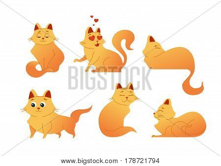 Kitty Cat - modern vector set of flat cartoon animal characters. Gift images of kitten relaxing, standing, sitting, lying, turning, smiling and having good time