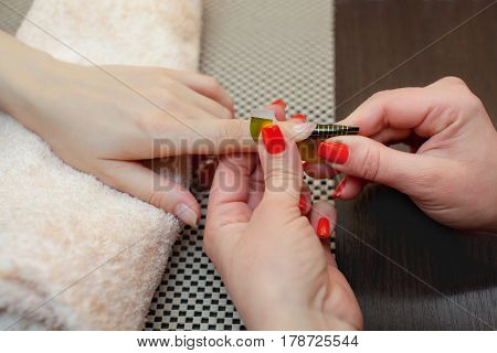 The Master Of The Nail Polish Puts A Fixative On The Finger Before Making The Nails Gel In The Beaut