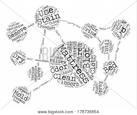 Investors How To Buy a House For Your Rent To Own Inventory text background wordcloud concept