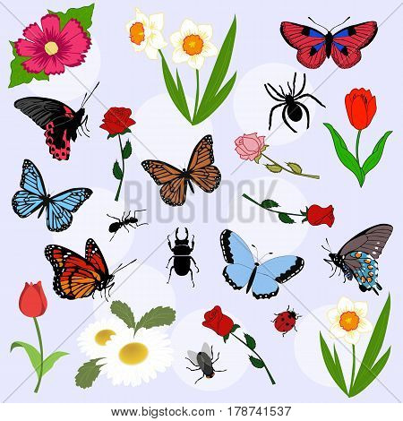 set of beautiful color Spring elements. Summer background. a collection of objects of nature. butterflies flowers and insects. pattern for decoration or scrapbook. Big doodle set of flowers and butterflies. Vector illustration. Floral set