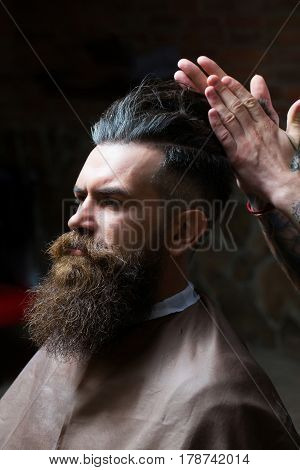 Bearded Man With Long Beard Getting Hair Styling