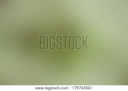 Abstract smoothly blurred background in green tonality