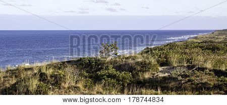 Wide view of the grassy flats and trees above the blues of the North Atlantic off the shoreline of Race Point Beach, Provincetown, Cape Cod, Massachusetts, two people walk in the distance with blue skies and clouds in mid September.