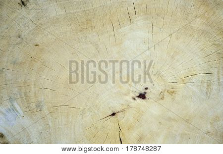 Old wooden surface for texture and background
