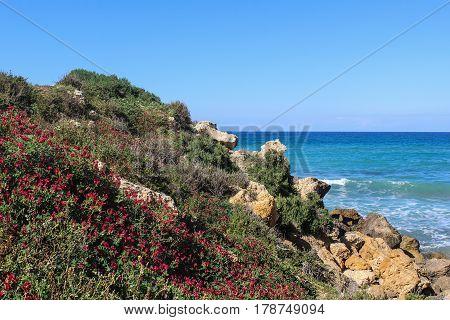 Where land meets the sea - Malta's beautiful coast in spring