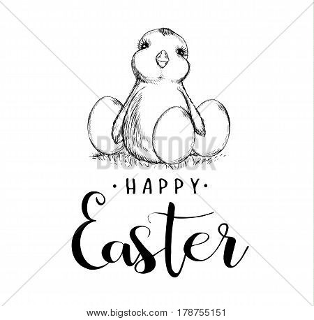 Happy Easter holiday Sketch. Chicken and eggs. Lettering calligraphy text