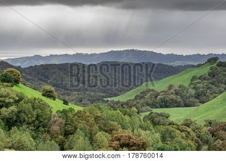 Rainy Clouds at Briones Regional Park. Lush winter wilderness in Contra Costa County, California, USA.