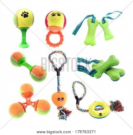 Pet Toy collection on White Background