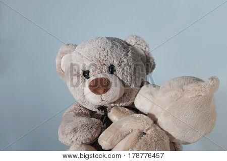 Teddy Bear with Teddy Bear (parental Love)
