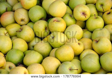 Background made with apples in the grocery marketplace. Golden delicious cultivar. Healthy eating fruit