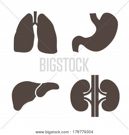 Set of four internal human organ silhouettes isolated on white background