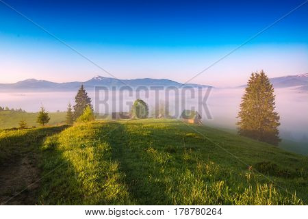 Wonderful Morning In A Carpathian Valley
