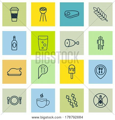 Set Of 16 Eating Icons. Includes Steak, Hooch, Chicken Fry And Other Symbols. Beautiful Design Elements.