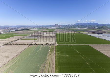 Aerial view of spring green farm fields and Santa Monica Mountains Parks near Camarillo in Ventura County, California.