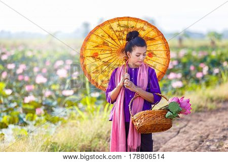 Beautiful thai women farmer wearing thai traditional dress and walk on the lotus lake and looking lotus in basket with countryside background