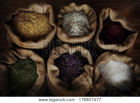 Variation of cereal crops seed in bags