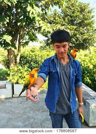 asian man with parrot in a park