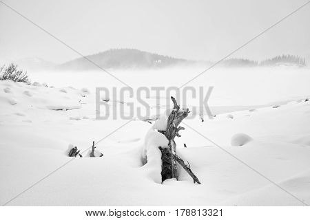 Landscape of the untouched snow of the Kananaskis Lake with snow covered deadwood in the foreground.