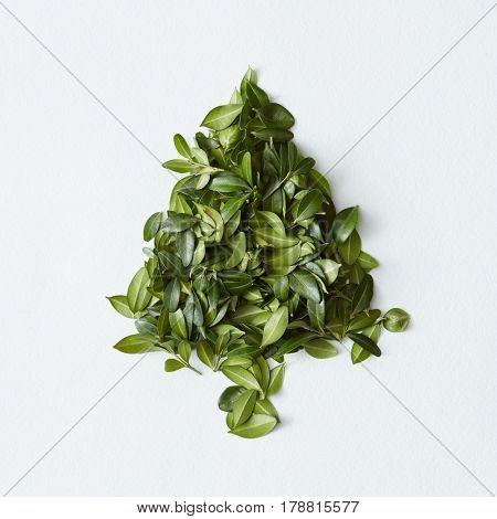 Green leaves arranged in tree shape on white background