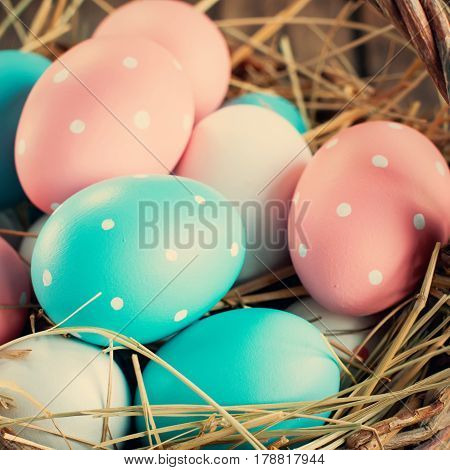 Close Up Of Easter Eggs Painted Pink Blue Colors