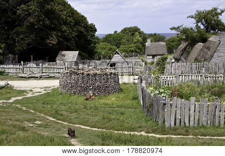 Plimoth Plantation, Plymouth, Massachusetts - September 10, 2014 - Wide view of pathways fences and old gray wooden sheds with a lone rooster in the foreground in the pilgrim village at Plimoth Plantation, Plymouth, Massachusetts on an overcast but bright