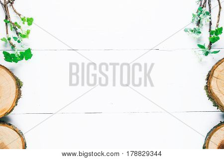 Background of wood planks painted in white. Bunches of blooming apple tree and young black current twigs in upper corners and apple tree slices on edge