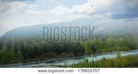 Scenic view of mountains in forest